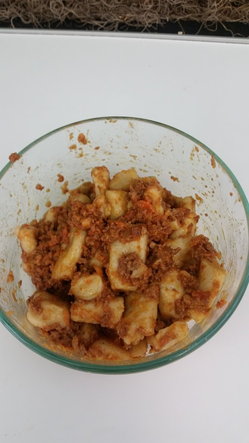 gnocchi with bologonese