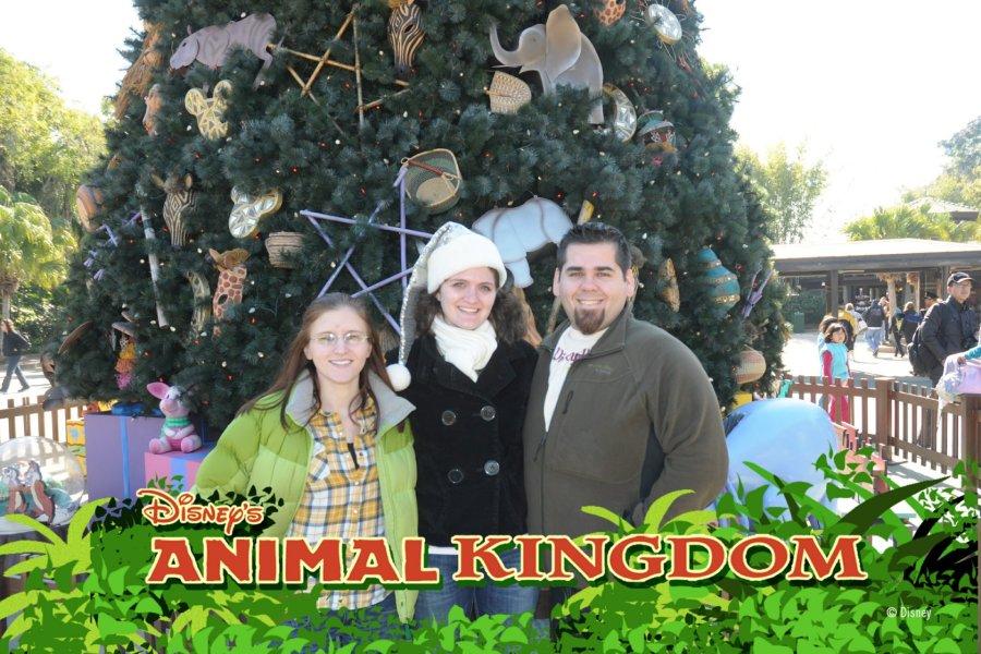 christmas-animal-kingdom